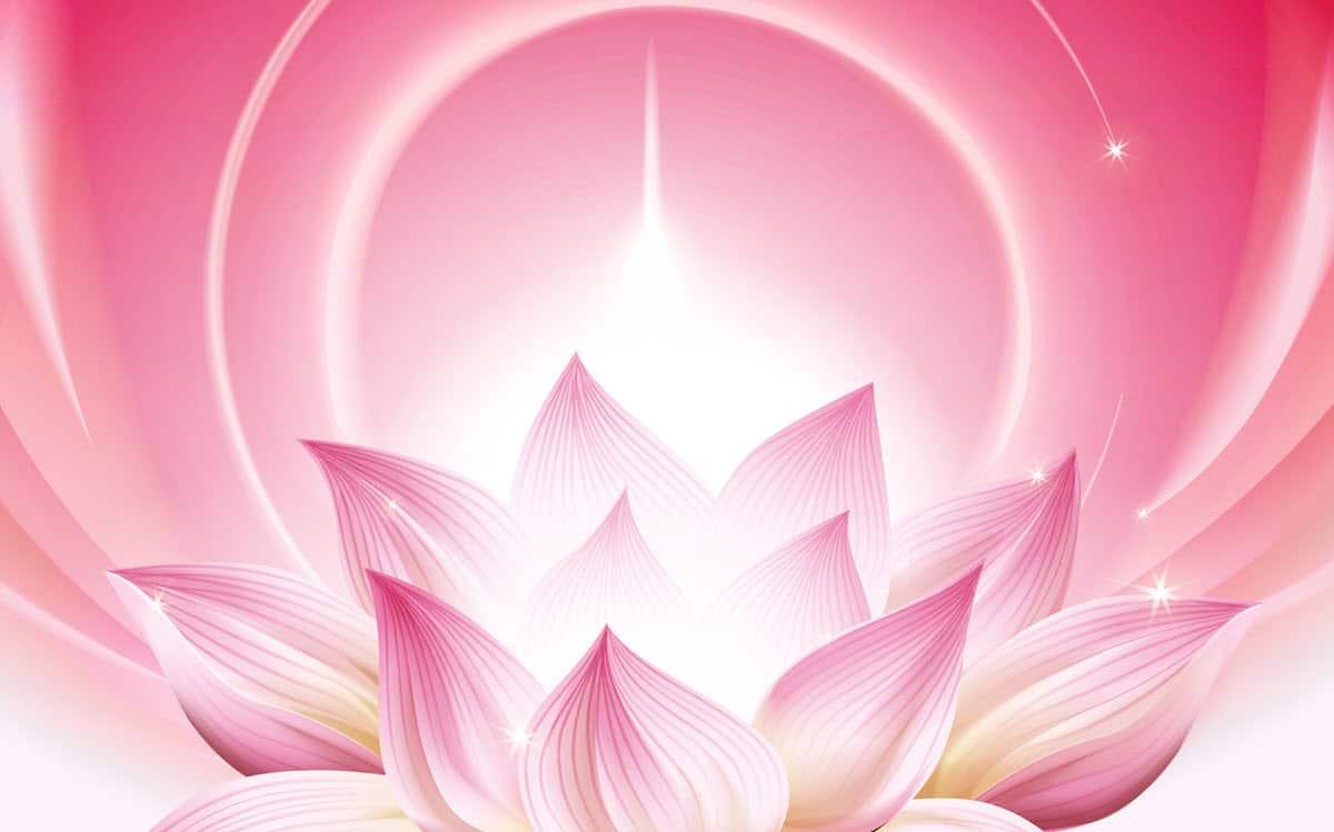 mindfulness 4 you