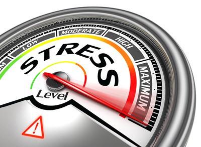 training mindfulness based stress reduction