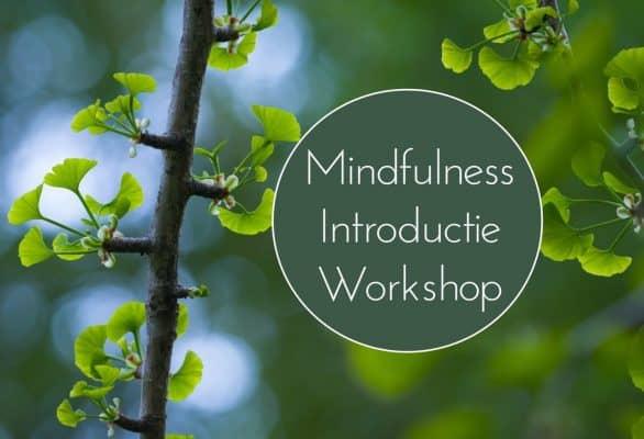 Mindfulness-Introductie-Workshop-2